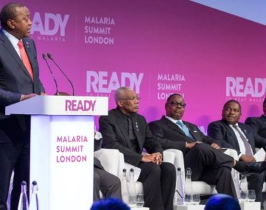 $4.1bn Investment Commitment Made To Rid Commonwealth Of Malaria
