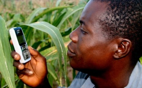 A new report fromWefarm one of the world largest farmer to farmer digital network indicates that 1.1 Million farmers both in Uganda and Kenya are embracing