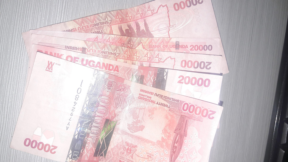 Shilling holds steady against Dollar
