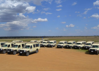 Tour operators in Tanzania are losing hope over the government's continued delay to enforce the import duty exemptions on tourist vehicles as the clock ticks towards the onset of the high a tourism season.