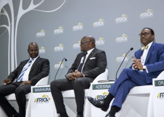 'Grab the Chance to Fast-track Development,' Adesina tells Africa Investment Forum