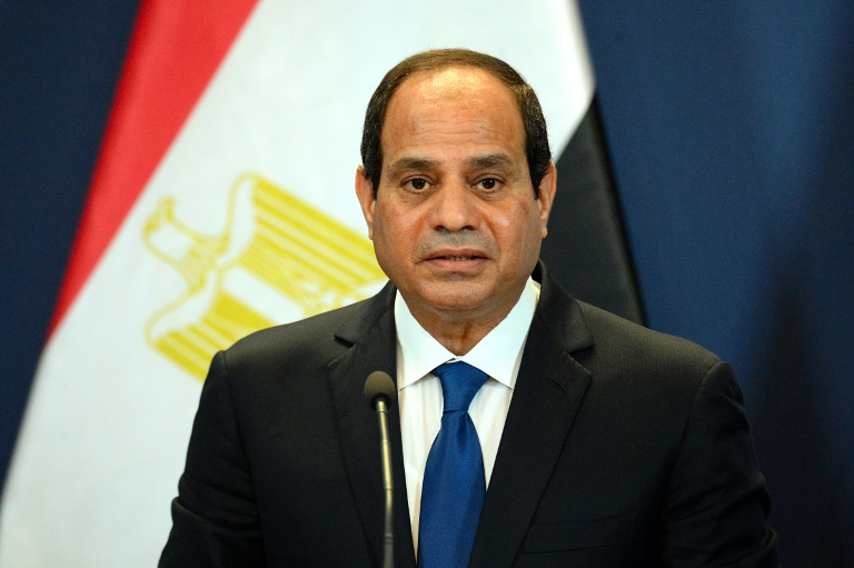"""Egyptian President Al Sisi has said that """"we are increasingly sending a clear message to the world that Africa is the future of the world economy and more so entrepreneurship."""""""