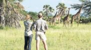 Tanzania earns US$2.44 billion from Tourism in 2018