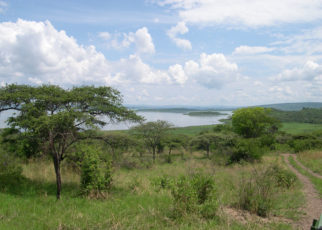 The lawmakers unanimously approved the upgrading of Biharamuro, Burigi, Kimisi, Ibanda and Rumanyika game reserves to national parks
