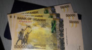 Steady dollar inflows elevate local currency performance