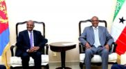 Eritrea explores economic relations with Somaliland