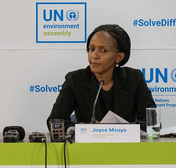 Joyce Msuya, the Acting Head of UN Environment