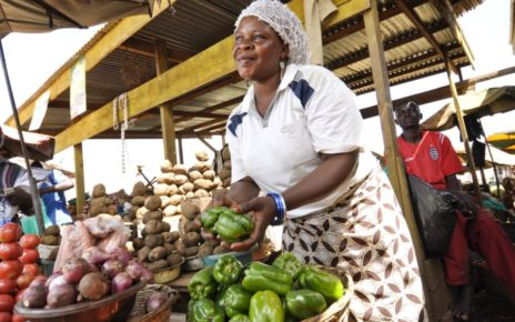 With the We-Fi funding, AFAWA intends to improve access to finance for 40,000 women-owned/led small and medium enterprises in 21 African countries,