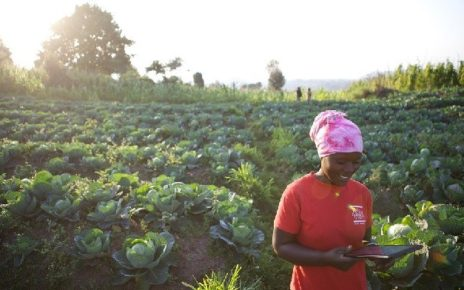 Africa has about 600 million hectares of arable land