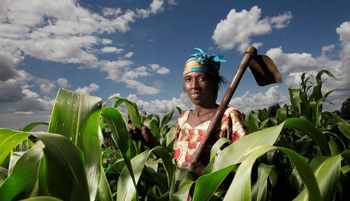 Smallholder farmers have asked the Government to involve them in the budget formulation process as they believe that it's the only way their views and voices will be heard.