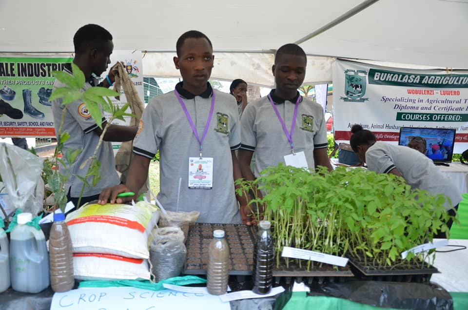 Students from Bukalasa Agriculture Institute displaying some of their crops at the show