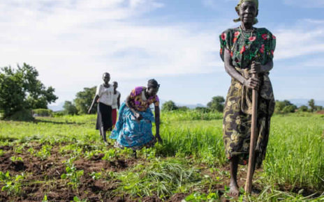 In South Sudan, the number of severely food insecure people was estimated at almost 7 million, 60 percent of the population, as of May-July 2019. Women weeding a field in Torit, South Sudan